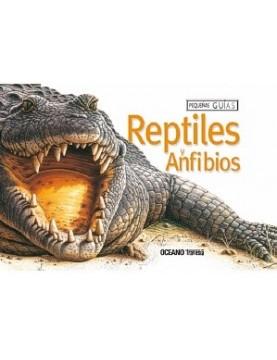 Reptiles y anfibios (guias)